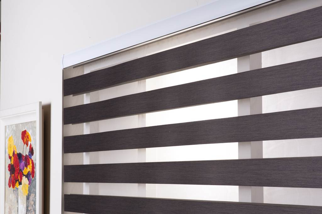 zebra-blinds-01