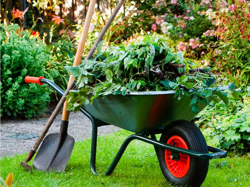 Garden-Services-MainImage