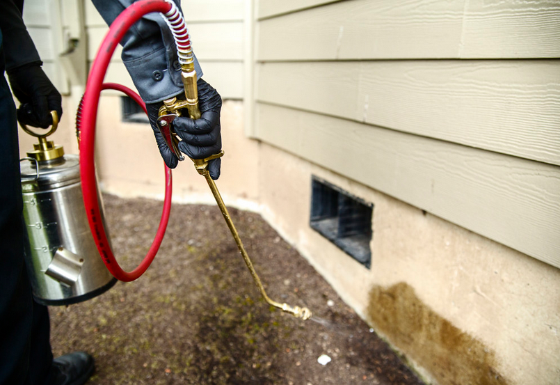 5 Reasons Why a Monthly Pest Control Expense Could Benefit Your Home –  Urbanic Designs